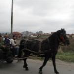 40-serbie 011 (Small)