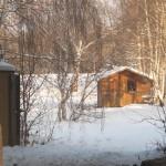 Ma cabane au fond de la forêt (Small)