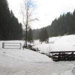 Paysage sous la neige (Small)
