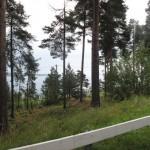 en montant vers la norvége 014 (Small)