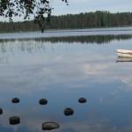 matin au bord du lac