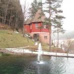 parc à Baiersbronn en forêt noire (Small)