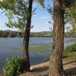 PHOTOS SLOVAQUIE reveil au bord du fleuve à trencin