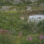 en montant vers la norvége 087 (Small)