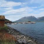 en montant vers la norvége 231 (Small)