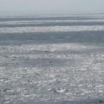 mer décrite par genevieve