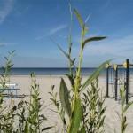 09-lettonie mer baltique (Small)